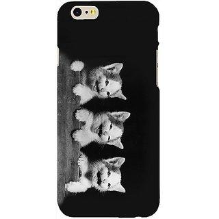 Casotec Playful Kittens Design Hard Back Case Cover For Apple Iphone Se gz8161-14662