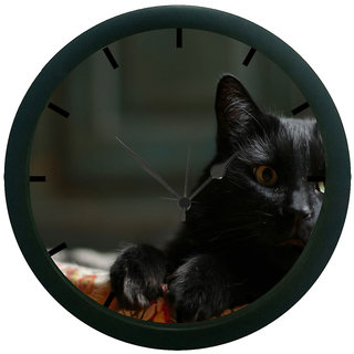 AE World Cat Wall Clock (With Glass)