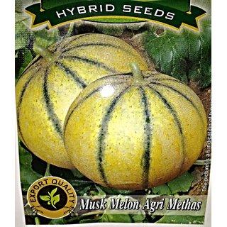 Seeds-Musk Melon
