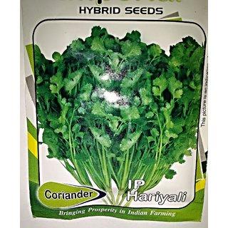 Seeds-Dhaniya Coriander 50 Pc