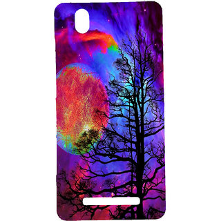 HI5OUTLET Premium Quality Printed Back Case Cover For Gionee F103 Design 18