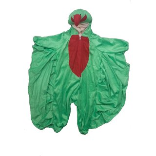 Parrot Bird Fancy Dress Costume With Wings For Kids