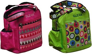 Gleam Mesh Padded Container Box Waterproof Lunch Bags         (Pink, Green, 10 L)