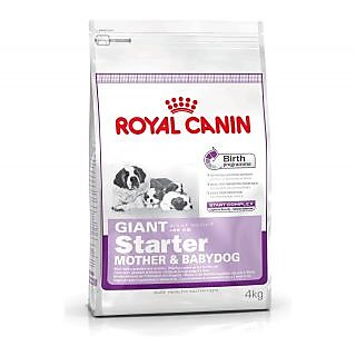 Royal Canin Giant Starter 4 Kg free shipping