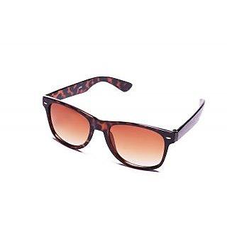 ST Wayfarer Sunglasses-STWF015