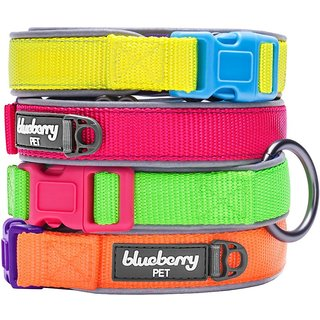 Pet Collars for Dogs