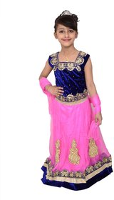 Arshia Fashions Lehenga Choli Dress