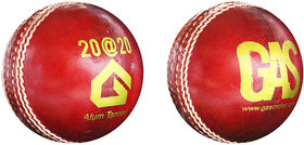 GAS 20-20 CRICKET BALL