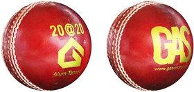 GAS 20-20 CRICKET BALL