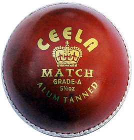 Ceela - Match Cricket Ball
