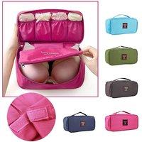 EVANA Women Travel Bra Underwear Lingerie Organizer Bag Cosmetic Makeup Toiletry bag Waterproof Wash Storage Case Bag (P