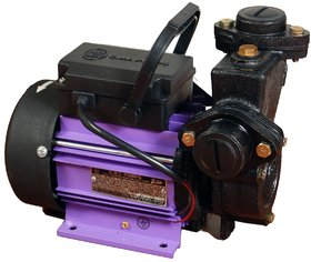 CRI 1 HP Self Priming Mono Block Water Pump