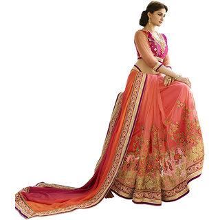 The Ethnic Chic Rani Colored Satin Georgette Saree