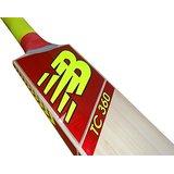 New Balance TC 360 Kashmir Willow Cricket Bat