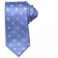 Sky Blue Color Tie