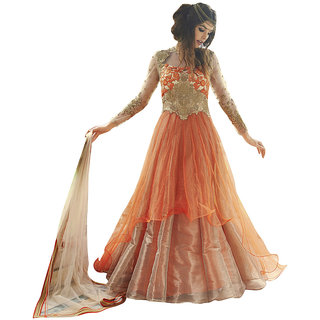 The Ethnic Chic Orange  Cream Colored Net Suit