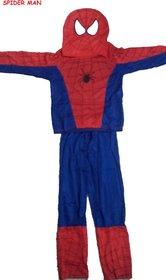 Spiderman Fancy Dress Costume For Kids