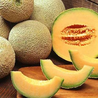 Seeds-Biocarve Muskmelon -Pack Of 50