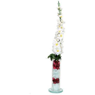 DBoro Transparent Glass Medium Size Straight Tube Flower Vase With White Delphinium Flowers