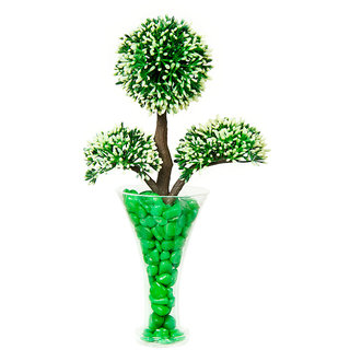 DBoro Transparent Glass Small Size Flower Vase With Green Tree  Green Pebbles