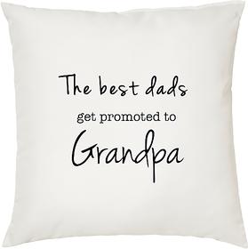My GrandPa  ShopTwiz Printed Cushion Cover 12 Inch ( Cushion Included )