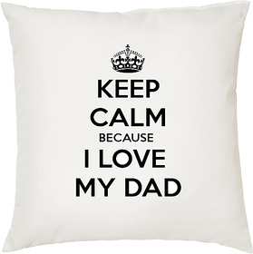 I love My Dad  ShopTwiz Printed Cushion Cover 12 Inch ( Cushion Included )