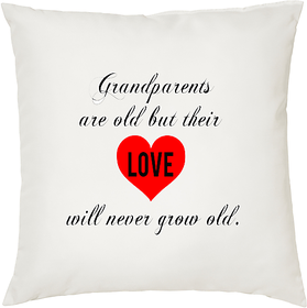 My Grandparents  ShopTwiz Printed Cushion Cover 12 Inch ( Cushion Included )
