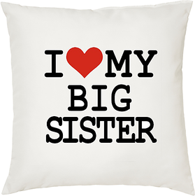 I Love My Sister  ShopTwiz Printed Cushion Cover 12 Inch ( Cushion Included )