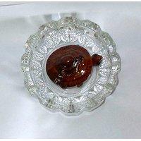 Feng Shui / Vastu Shastra/ Lucky Kasa / Tortoise / Turtle With High Quality Crystal Glass Tray- Decor Decorative