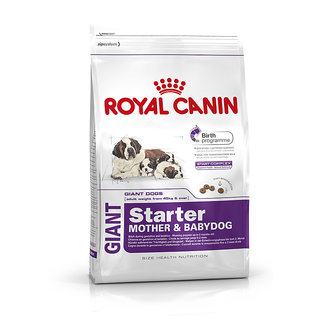 Royal Canin Giant Starter (4 Kg)