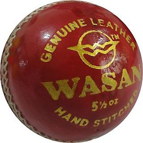 Wasan Leather Cricket Ball