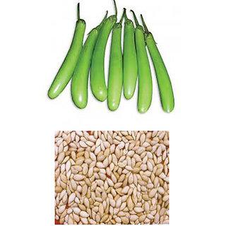 Vegetable Seeds - Green brinjal seeds