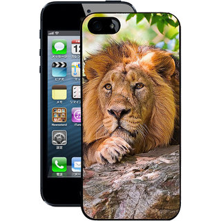 Instyler Digital Printed Back Cover For Apple I Phone 5 IP5DS-10319