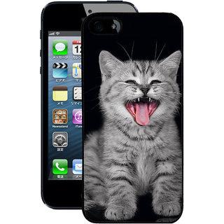 Instyler Digital Printed Back Cover For Apple I Phone 5S IP5SDS-10324