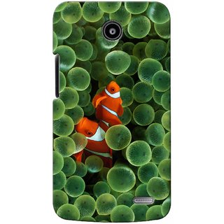 Snooky Digital Print Hard Back Case Cover For Lenovo A820