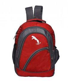 746bc83882f Buy School Bags Online - Upto 92% Off   भारी छूट   Shopclues.com