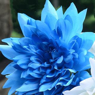 Seeds-Futaba Blue Fireball Dahlia Flower - 20