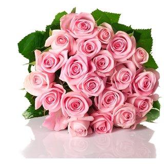 Seeds-Futaba Pink Rose Of Rare Color Aroma - 100 Pcs