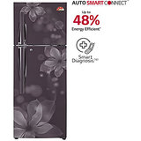 LG GL-U302JGOL 284 Litres Double Door Frost Free Refrigerator (Graphite Orchid)