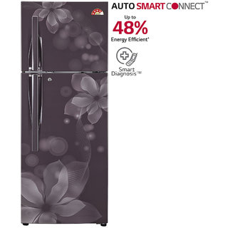 LG 258 L GL-U292JGOL Frost Free Double Door 4 Star  Refrigerator - Graphite Orchid (Available in Delhi NCR Only )
