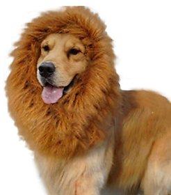 Futaba Dog Lion Mane Wig Costume - Large
