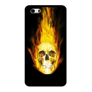 Slr Back Case For Apple Iphone 5S  SLRIP5S2D0531