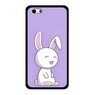 Slr Back Case For Apple Iphone 5S  SLRIP5S2D0924