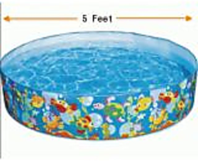 Buy Intex 5 Feet Swimming Pool For Kids Online 1188 From Shopclues