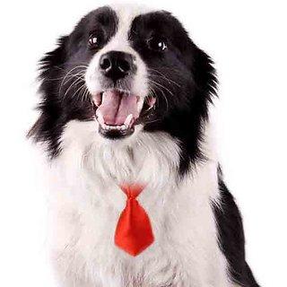 Futaba Pet Grooming Necktie - Red