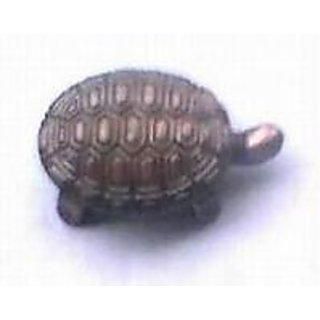 New Wish Turtle - Feng Shui