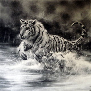 Charcoal Drawing 7
