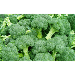 Seeds-Broccoli Italian Pack Of 50