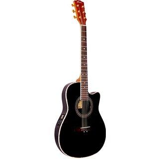 Hobner Red Devil 41 C Acoustic Guitars