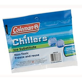 Coleman Pack Ice Substitute Small